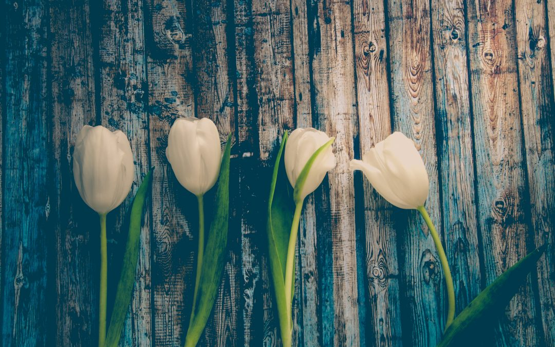 Tervetuloa kevätkokoukseen!